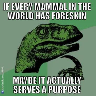 If people were supposed to have foreskin they'd be born with it